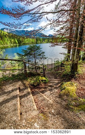 Beautiful Forest Stairs Leading To The Lake In The Alps