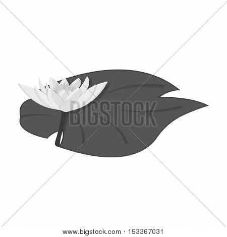 Lotus icon in monochrome style isolated on white background. India symbol vector illustration.