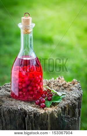 Sweet Liqueur Made Of Alcohol And Redcurrants
