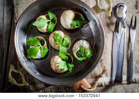 Tasty snails with garlic butter and parsley