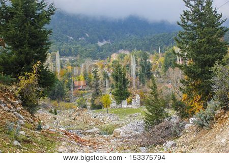 Colored trees and small red house on mountain background in Turkey.