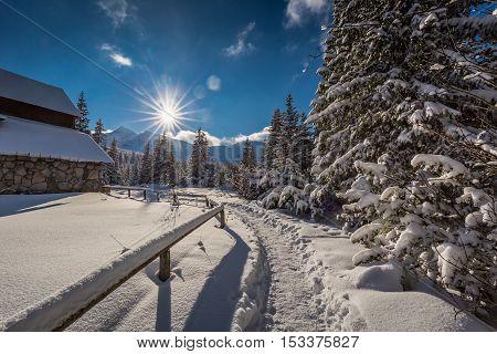 Winter Trail To Mountain Hut At Dawn, Tatra Mountains, Poland
