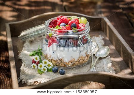 Muesli With Flowers And Fruits In Sunny Day