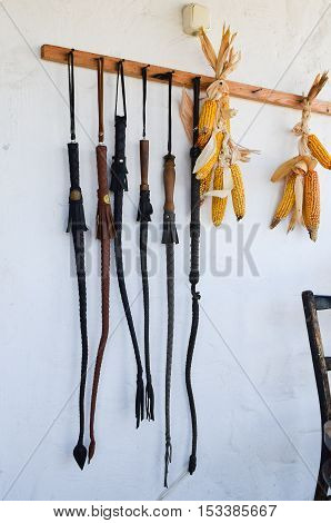 Cossack Whip Hanging On The Wall
