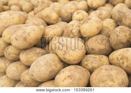 Potatoes. Fresh potatoes. Potatoes in the market. Yellow potatoes. Potatoes background. Vegetable Potatoes. (Selective background)
