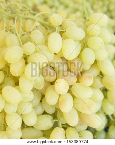 Grape. Wine grapes background. Green grapes. Grapes an market. It can be used as a food background (selective focus)