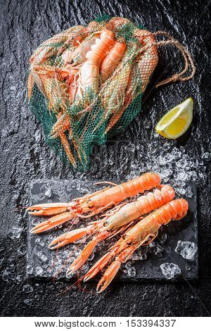 Fresh scampi on crushed ice on old wooden table