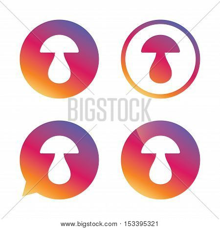 Mushroom sign icon. Boletus mushroom symbol. Gradient buttons with flat icon. Speech bubble sign. Vector