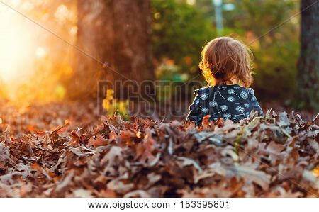 Toddler Girl Playing In A Pile Of Fall Leaves At Sunset