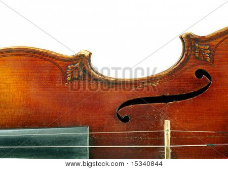 Part of violin  on white background