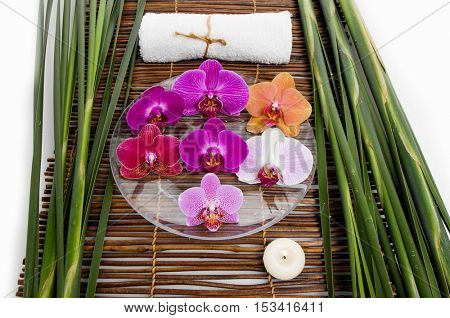 Colorful orchid in bowl and green leaf with towel on mat