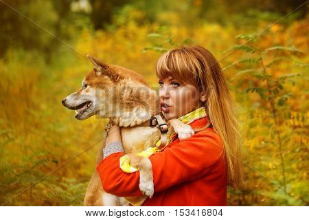 Girl hugs dog Shiba Inu in autumn park. Pedigree dog. Funny animals and their owners. Riot of colors of nature. Outdoor Activities.