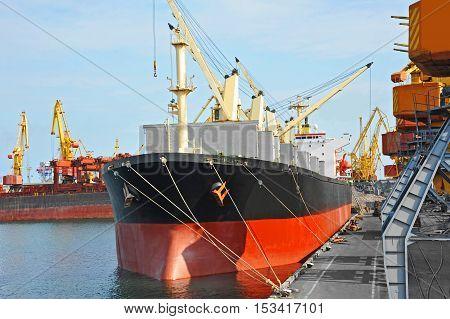 Bulk Cargo Ship Under Port Crane