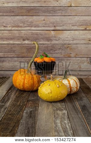 Pumpkin muffin with ornamental fall gourds on wooden backdrop