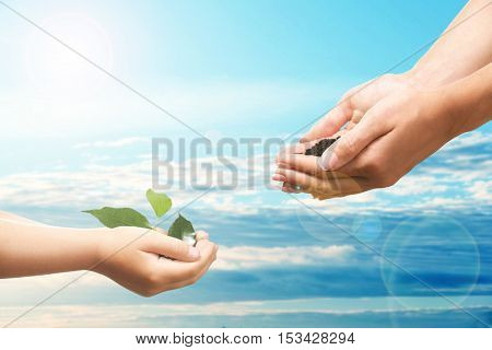 Mother and child hands with soil and seedling on sky background. Help and care concept.