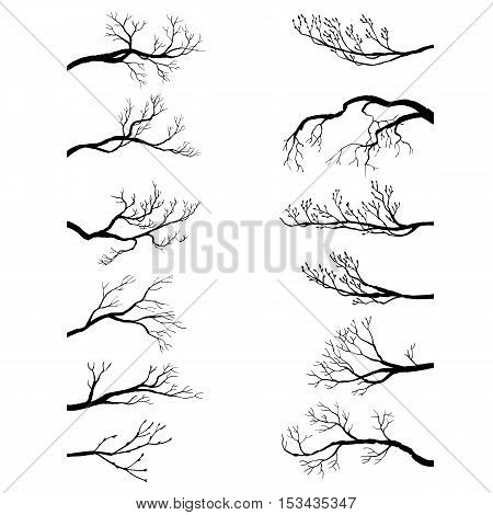 set of tree branches without leaves, winter twigs, isolated hand drawn vector elements