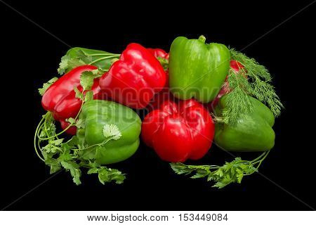 Several fresh green and red bell peppers and twigs of parsley cilantro and dill closeup on a dark background