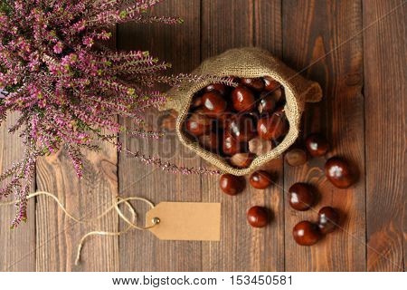 Heathers in ceramic pots horse chestnuts in jute bag and tag on background of dark wooden boards