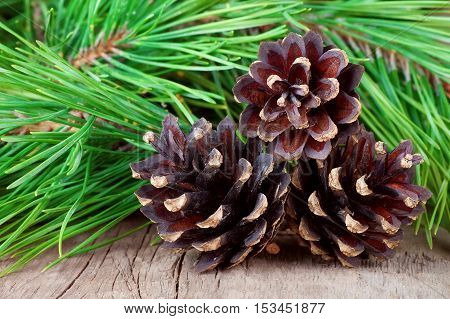 Christmas ornaments on old wooden table. Closeup on conifer cones with pine tree branches on wooden background. Christmas fir tree with pine cones on a wooden board. Christmas postcard