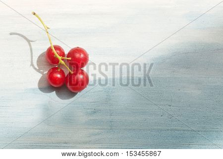 Red Currant On Wood Table