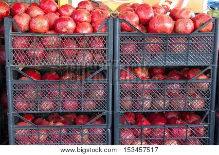 pomegranate fruit background. Citrus group. Market place in Turkey