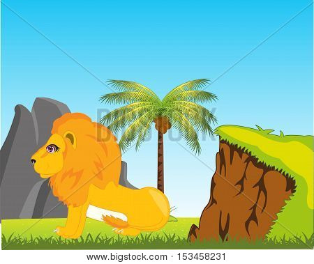 Vector illustration of the wildlife lion in africa