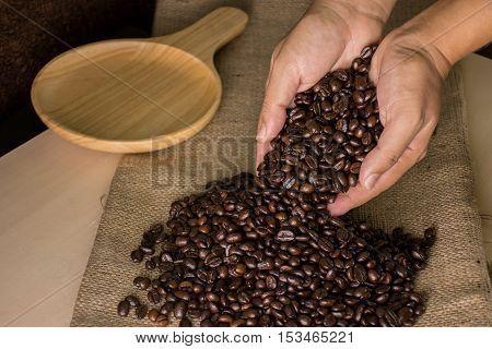 Coffee beans in hands hemp sack on wood table
