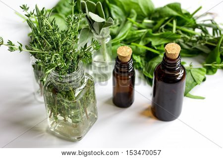 mint, sage, rosemary, thyme - aromatherapy white background top view