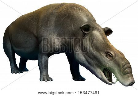 Moeritherium from the Eocene era 3D illustration