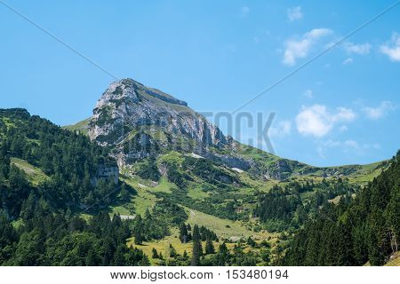 A swiss mountain in the distance with forest in the foreground