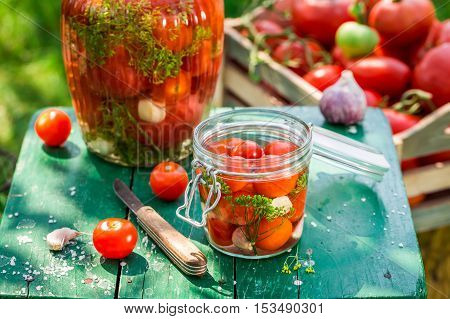 Fresh ingredients for pickled tomatoes in countryside at summer