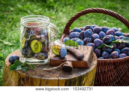 Homemade preserving plums with sugar in countryside at summer