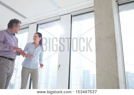Mature businessman discussing with female colleague by office windows