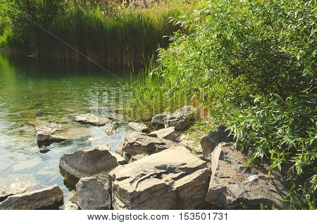 quarry pond with green color water, reed, rock and green leaves of a tree. summer season landscape.