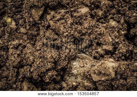 Soil, ground, wet soil texture, wet ground, grunge ground background