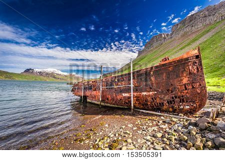 Old ship wreck in Iceland in summer