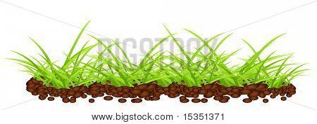 Verde césped en terreno