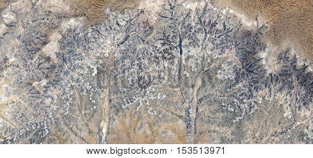 Stone tree plant fantasy, Abstract photography of landscapes of deserts of Africa from the air