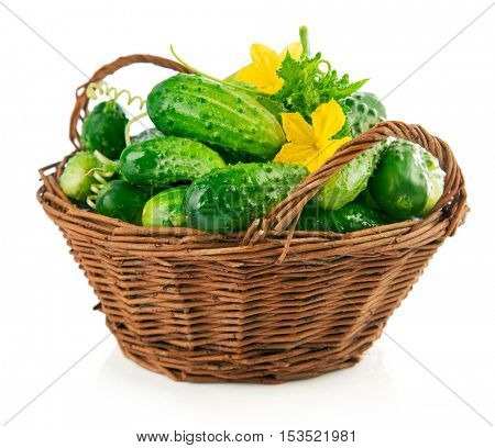 Fresh cucumbers in wicker basket with green leaves and flowers. Isolated on white background