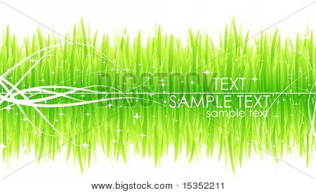 Abstract natural background with grass