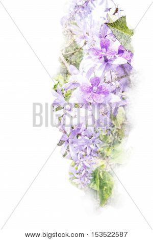 Watercolor painting illustration of blossom purple wreath flower. Artistic floral abstract background.