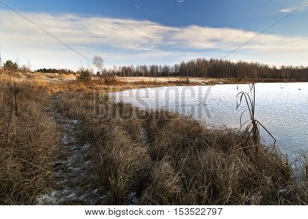 Winter Sunny day on the shore of a frozen lake near the forest