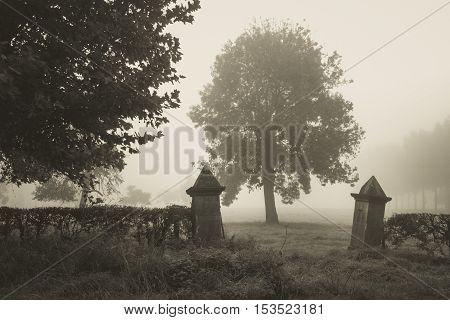 Entrance to an abandoned cemetery in the fog