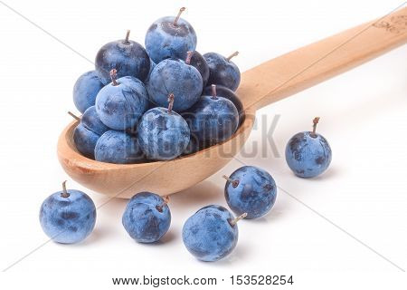 blackthorn berries in a wooden spoon isolated on white background.