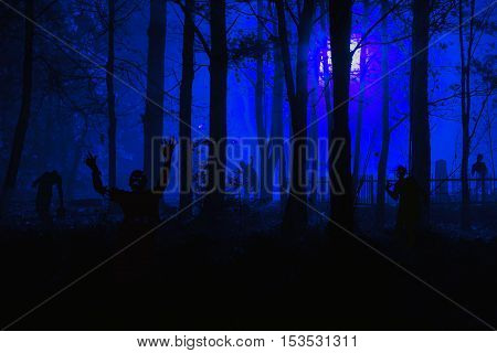Zombies in the cemetery. crowd of hungry zombies in the woods. Silhouettes of scary zombies walking in the forest at night