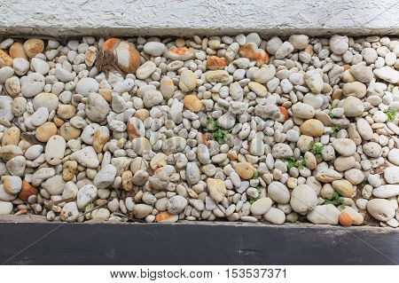 Variety of gravel decorated on ground in garden