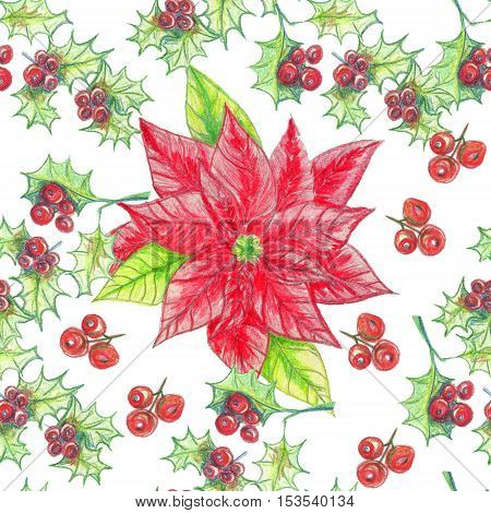 Hand drawn watercolor seamless pattern Christmas arrowhead plant red holly berries. Xmas decorate.