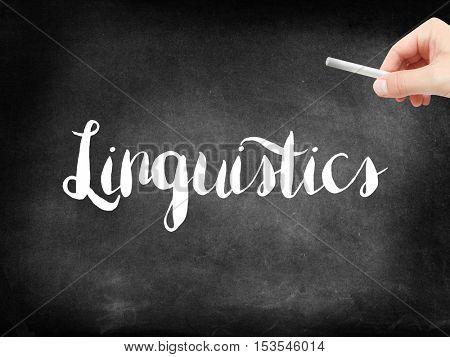 Linguistics written on a blackboard