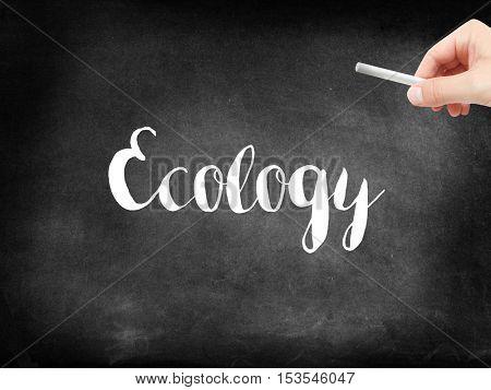 Ecology written on a blackboard