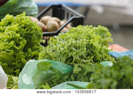 Fresh salad at farmers market for sale.